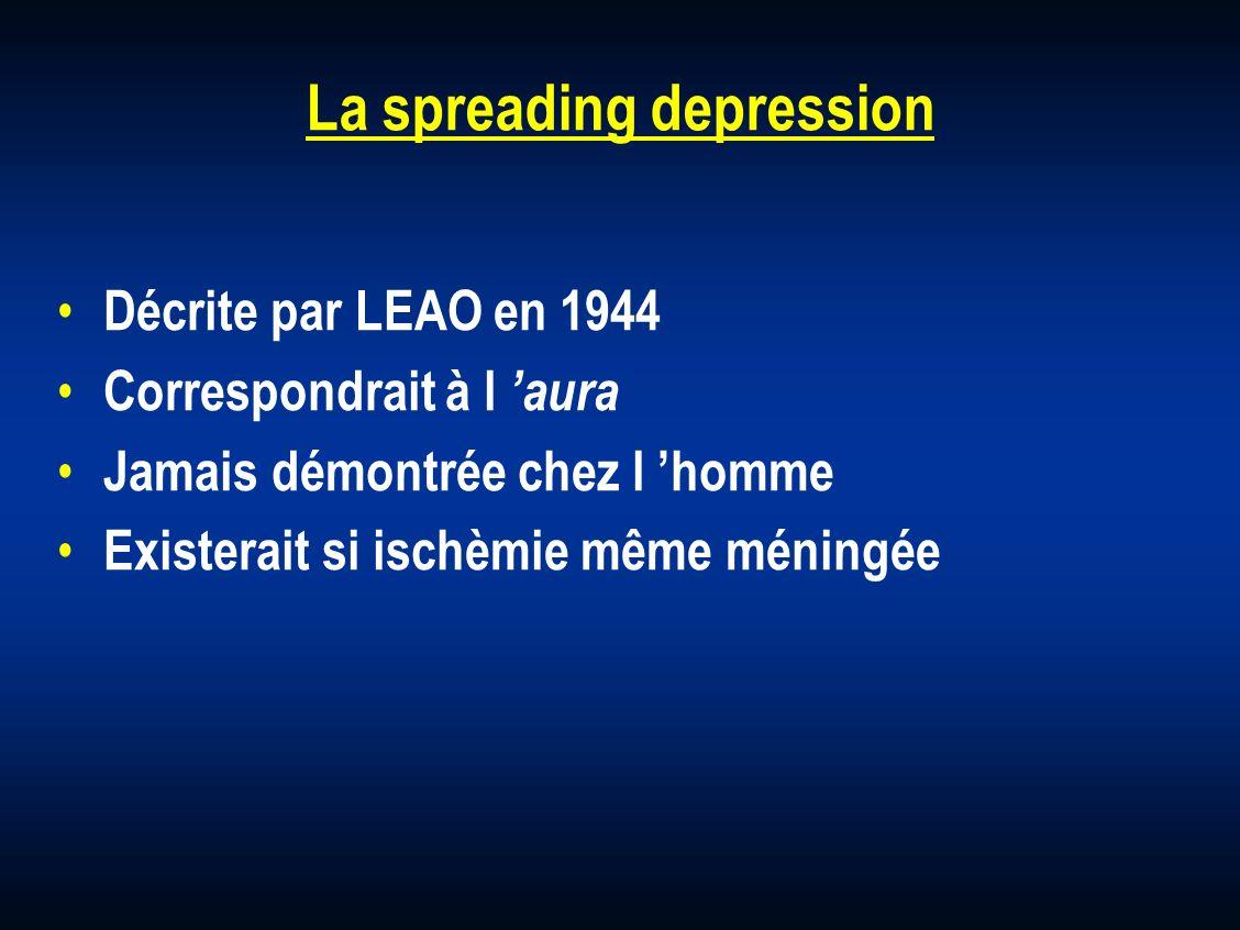 La spreading depression Décrite par LEAO en 1944 Correspondrait à l aura Jamais démontrée chez l homme Existerait si ischèmie même méningée