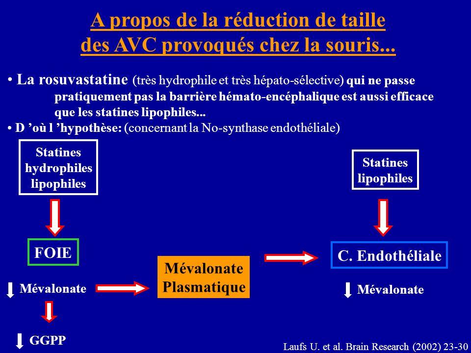 A propos de la réduction de taille des AVC provoqués chez la souris... La rosuvastatine (très hydrophile et très hépato-sélective) qui ne passe pratiq