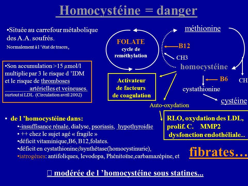 Son accumulation >15 mol/l multiplie par 3 le risque d IDM et le risque de thromboses artérielles et veineuses. surtout si LDL (Circulation avril 2002
