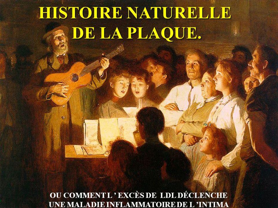 HISTOIRE NATURELLE DE LA PLAQUE. OU COMMENT L EXCÈS DE LDL DÉCLENCHE UNE MALADIE INFLAMMATOIRE DE L INTIMA