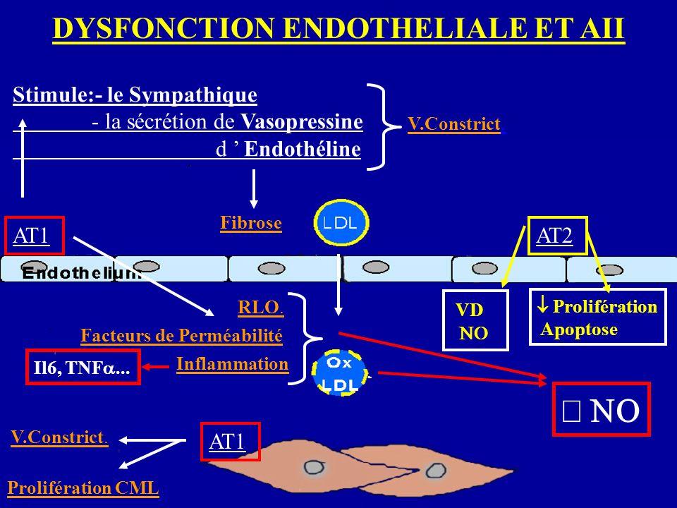 DYSFONCTION ENDOTHELIALE ET AII AT1 Stimule:- le Sympathique - la sécrétion de Vasopressine d Endothéline V.Constrict.