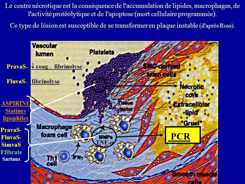 Thrombine Vaso- constriction Le centre nécrotique est la conséquence de l accumulation de lipides, macrophages, de l activité protéolytique et de l apoptose (mort cellulaire programmée).
