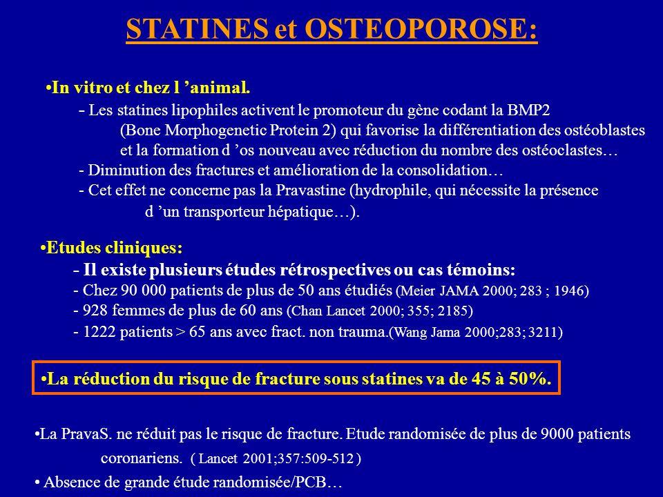 STATINES et OSTEOPOROSE: In vitro et chez l animal. - Les statines lipophiles activent le promoteur du gène codant la BMP2 (Bone Morphogenetic Protein