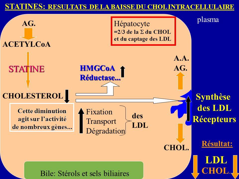 STATINES: RESULTATS DE LA BAISSE DU CHOL INTRACELLULAIRE AG.
