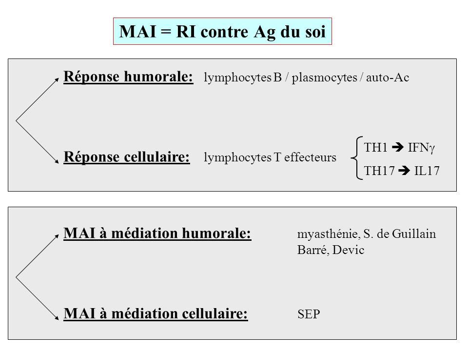 Anti-aquaporine-4 Le bio-marqueurs parfait ??