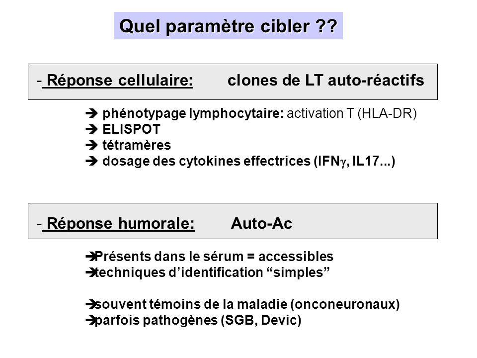 IFI sur coupe de cervelet de souris Marquage intense de la couche moléculaire + cell de Purkinje + substance blanche Sérum 1/ 6000 – LCR 1/2000