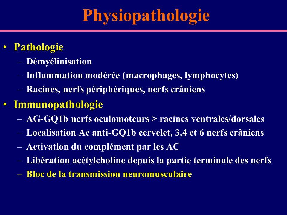Physiopathologie Pathologie –Démyélinisation –Inflammation modérée (macrophages, lymphocytes) –Racines, nerfs périphériques, nerfs crâniens Immunopath