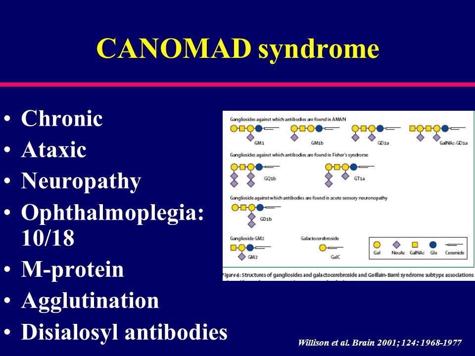CANOMAD syndrome Chronic Ataxic Neuropathy Ophthalmoplegia: 10/18 M-protein Agglutination Disialosyl antibodies Willison et al. Brain 2001; 124: 1968-