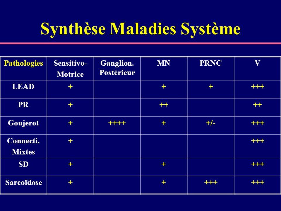 Synthèse Maladies Système PathologiesSensitivo- Motrice Ganglion. Postérieur MNPRNCV LEAD++++++ PR+++ Goujerot+++++++/-+++ Connecti. Mixtes ++++ SD+++