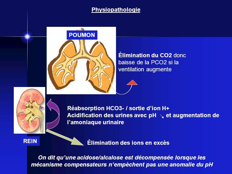 Physiopathologie Réabsorption HCO3- / sortie dion H+ Acidification des urines avec pH et augmentation de lamoniaque urinaire Élimination du CO2 donc b