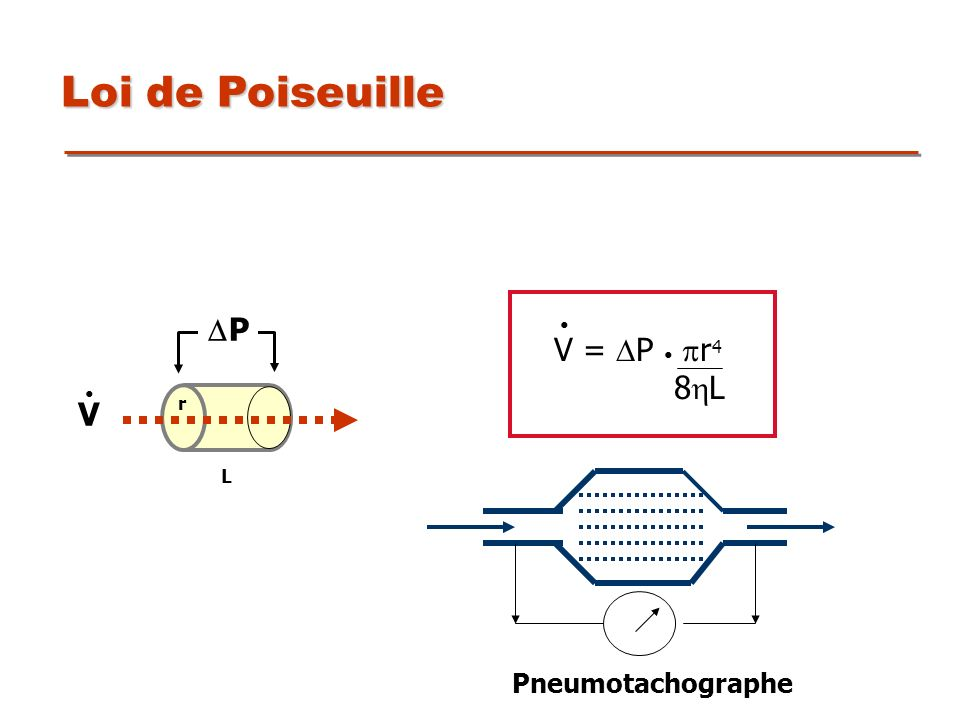 P r L V Loi de Poiseuille V = P r 4 8 L Pneumotachographe