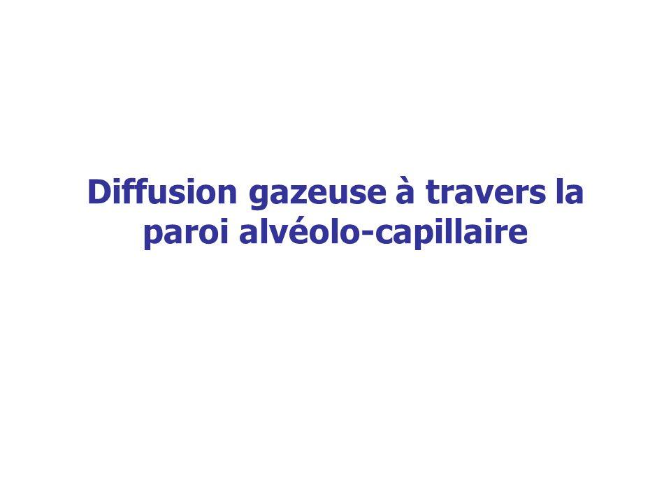 Diffusion gazeuse à travers la paroi alvéolo-capillaire