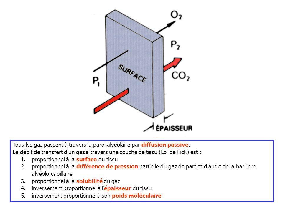 Tous les gaz passent à travers la paroi alvéolaire par diffusion passive. Le débit de transfert d'un gaz à travers une couche de tissu (Loi de Fick) e