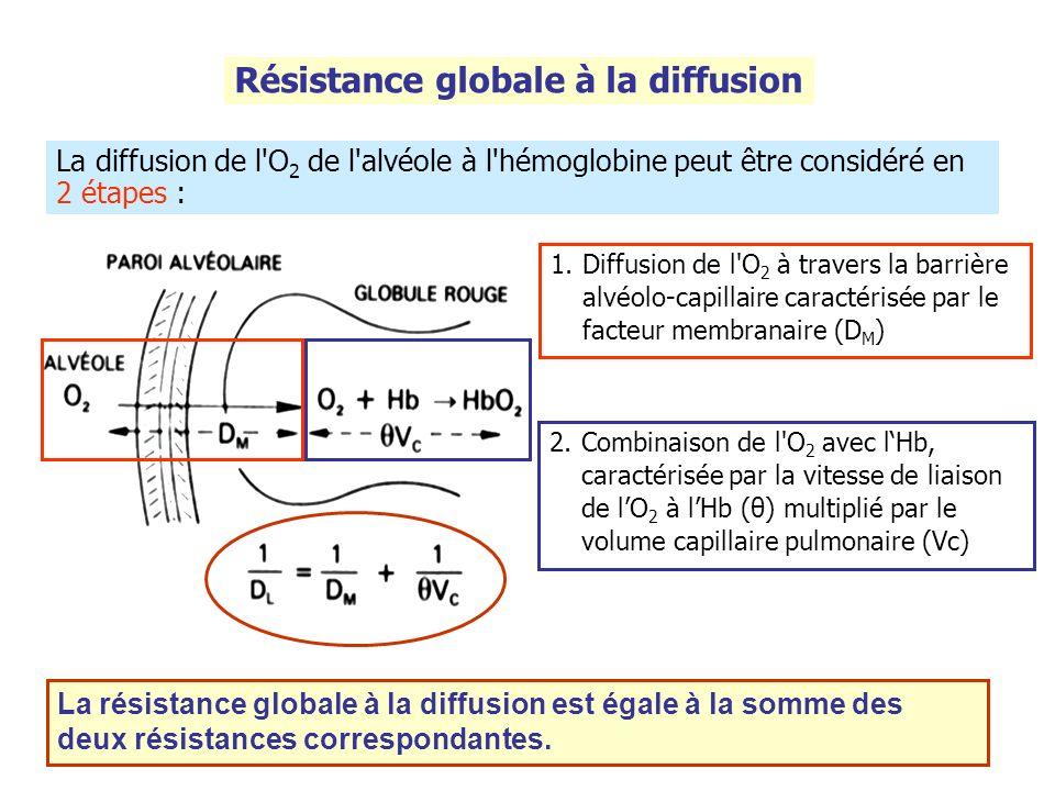Résistance globale à la diffusion La diffusion de l'O 2 de l'alvéole à l'hémoglobine peut être considéré en 2 étapes : 1.Diffusion de l'O 2 à travers