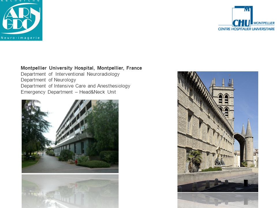 Montpellier University Hospital, Montpellier, France Department of Interventional Neuroradiology Department of Neurology Department of Intensive Care