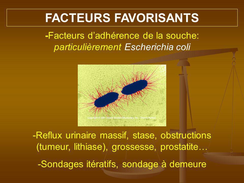 Dépistage Nombre élevé dexamens à pratiquer = Usage du test à la bandelette largement adopté Recherche de - nitrites, - leucocytes, - sang, - albumine Forte valeur prédictive négative ECBU