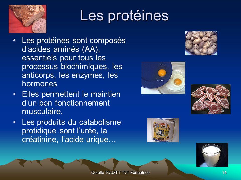 Colette TOUZET IDE-Formatrice14 Les protéines Les protéines sont composés dacides aminés (AA), essentiels pour tous les processus biochimiques, les anticorps, les enzymes, les hormones Elles permettent le maintien dun bon fonctionnement musculaire.