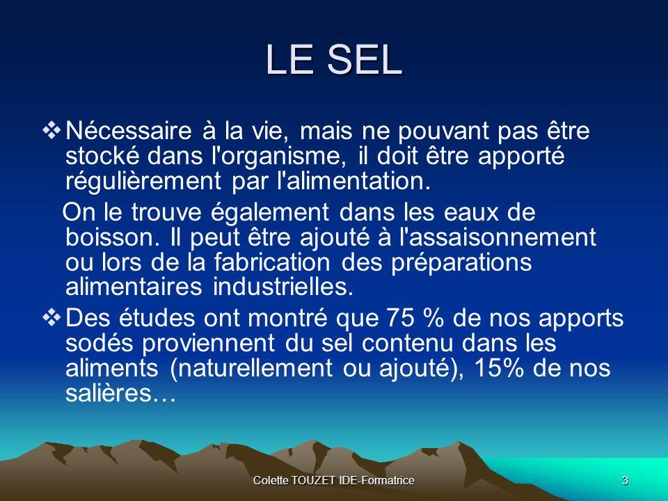 Colette TOUZET IDE-Formatrice4 LE SEL Le sel est aussi indispensable à notre palais.