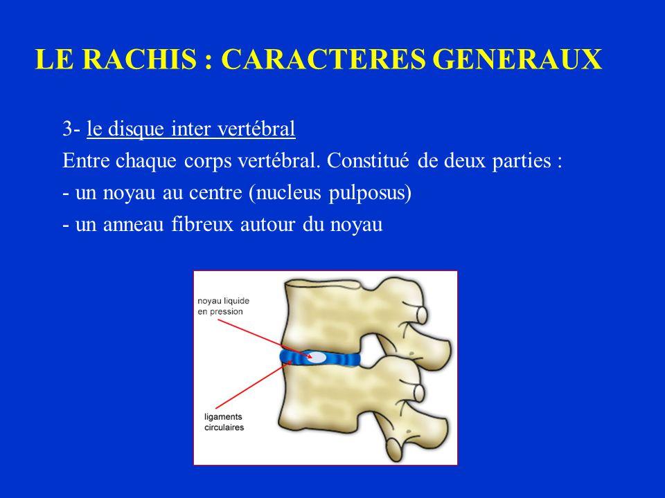 3- le disque inter vertébral Entre chaque corps vertébral. Constitué de deux parties : - un noyau au centre (nucleus pulposus) - un anneau fibreux aut