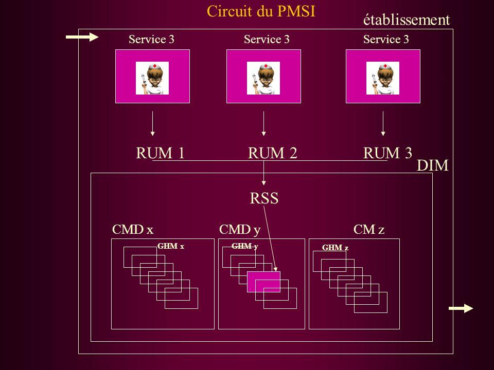 DIM Service 3 CM zCMD yCMD x RUM 1RUM 2RUM 3 RSS GHM z GHM yGHM x Circuit du PMSI établissement
