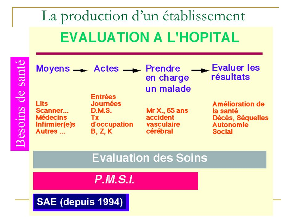 La production dun établissement Besoins de santé SAE (depuis 1994)