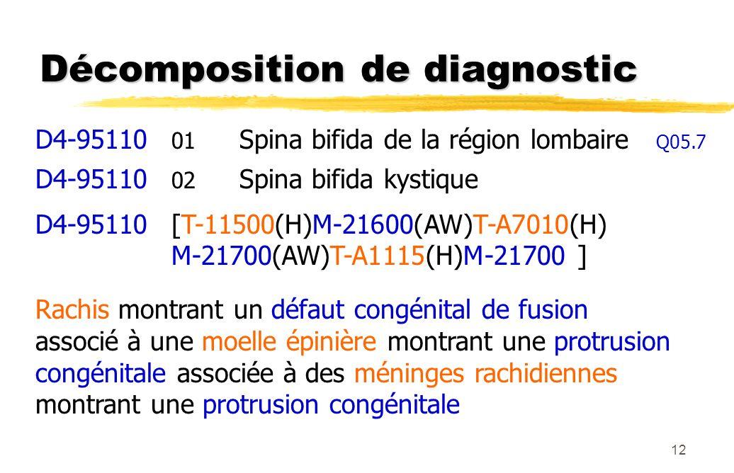 12 Décomposition de diagnostic D4-95110 01 Spina bifida de la région lombaire Q05.7 D4-95110 02 Spina bifida kystique D4-95110[T-11500(H)M-21600(AW)T-