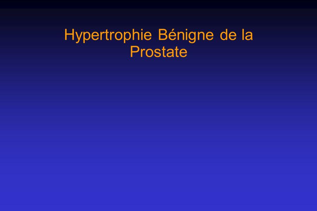: échographie Evaluation de lHBP : échographie Permet dévaluer : le retentissement vésical le retentissement sur le haut appareil urinaire le volume de la prostate léchostructure de la prostate Permet dévaluer : le retentissement vésical le retentissement sur le haut appareil urinaire le volume de la prostate léchostructure de la prostate