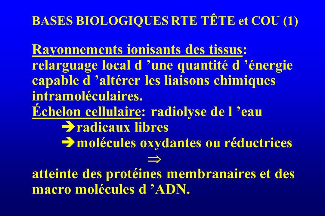 BASES BIOLOGIQUES RTE TÊTE et COU (2) Niveau membranaire: *peroxydation de la double couche lipidique altération létale de la membrane *augmentation de la C protéine kinase apoptose: mort cellulaire programmée sous contrôle de l anti oncogène p53: blocage du cycle C G1-S réparation ou mort par apoptose