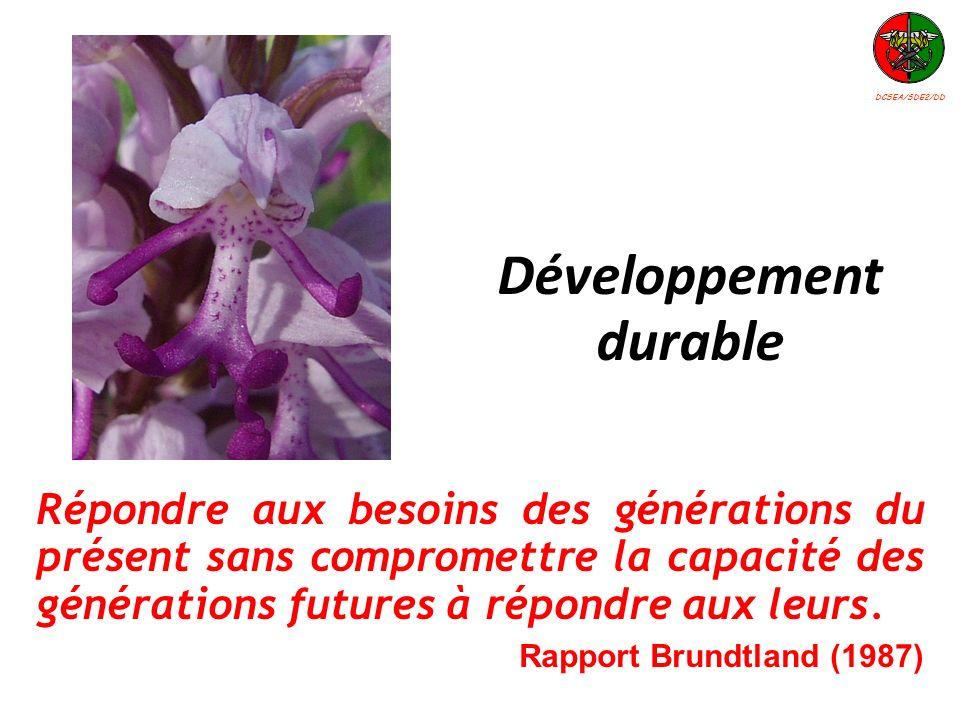 Répondre aux besoins des générations du présent sans compromettre la capacité des générations futures à répondre aux leurs. Rapport Brundtland (1987)