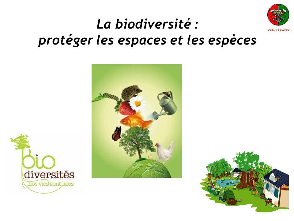 La biodiversité : protéger les espaces et les espèces DCSEA/SDE2/DD
