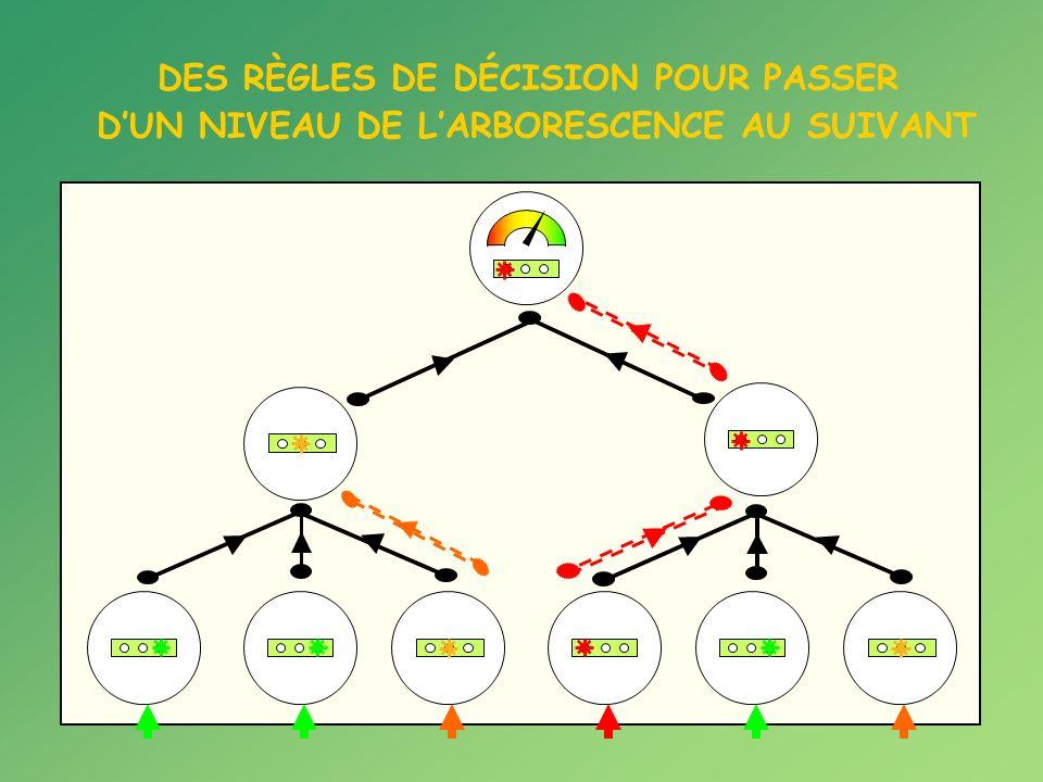 DES RÈGLES DE DÉCISION POUR PASSER DUN NIVEAU DE LARBORESCENCE AU SUIVANT