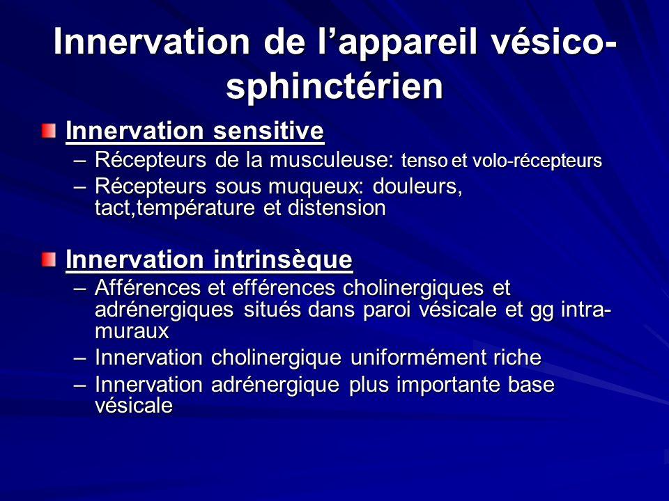 Innervation de lappareil vésico- sphinctérien Innervation sensitive –Récepteurs de la musculeuse: tenso et volo-récepteurs –Récepteurs sous muqueux: d
