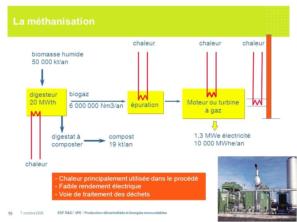 7 octobre 2005 EDF R&D / SPE / Production décentralisée et énergies renouvelables 10 La méthanisation digesteur 20 MWth biomasse humide 50 000 kt/an épuration biogaz 6 000 000 Nm3/an Moteur ou turbine à gaz 1,3 MWe électricité 10 000 MWhe/an chaleur digestat à composter - Chaleur principalement utilisée dans le procédé - Faible rendement électrique - Voie de traitement des déchets compost 19 kt/an chaleur