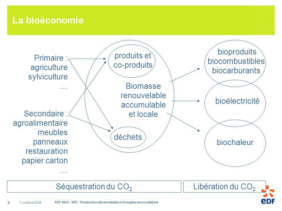 7 octobre 2005 EDF R&D / SPE / Production décentralisée et énergies renouvelables 5 La bioéconomie Biomasse renouvelable accumulable et locale déchets produits et co-produits Primaire : agriculture sylviculture … Secondaire : agroalimentaire meubles panneaux restauration papier carton … bioélectricité biochaleur bioproduits biocombustibles biocarburants Séquestration du CO 2 Libération du CO 2