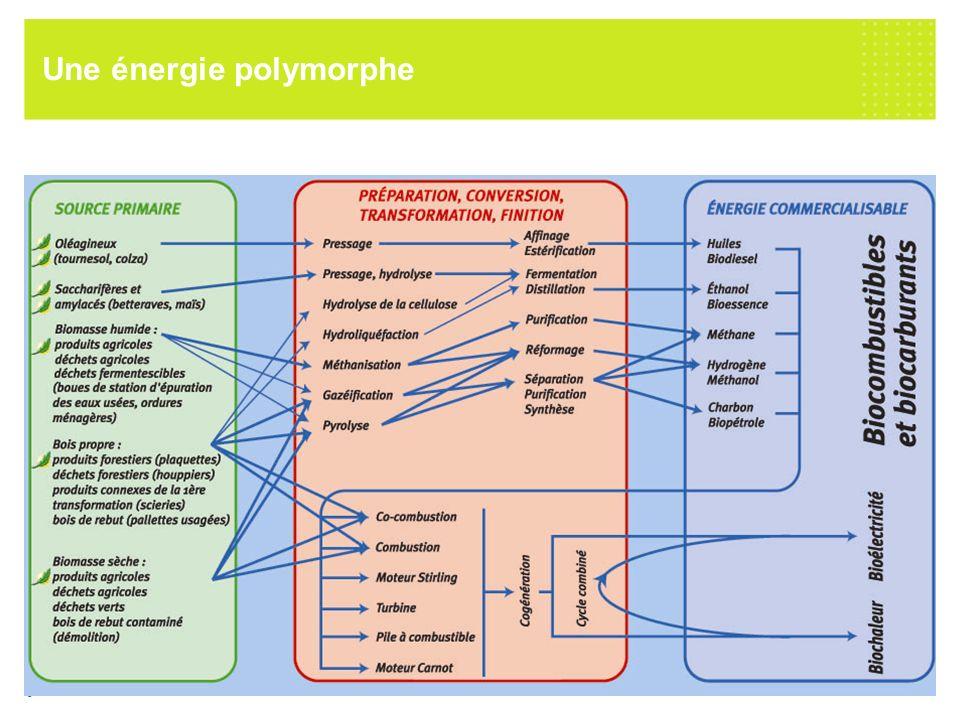 7 octobre 2005 EDF R&D / SPE / Production décentralisée et énergies renouvelables 6 Une énergie polymorphe