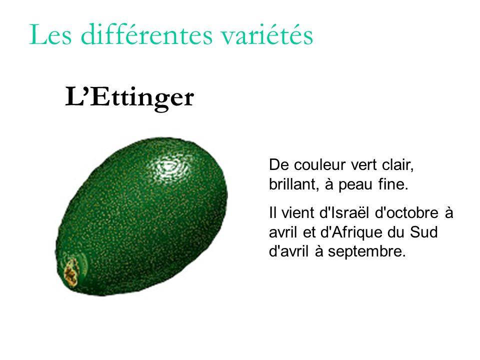 Les différentes variétés De couleur vert clair, brillant, à peau fine. Il vient d'Israël d'octobre à avril et d'Afrique du Sud d'avril à septembre. LE