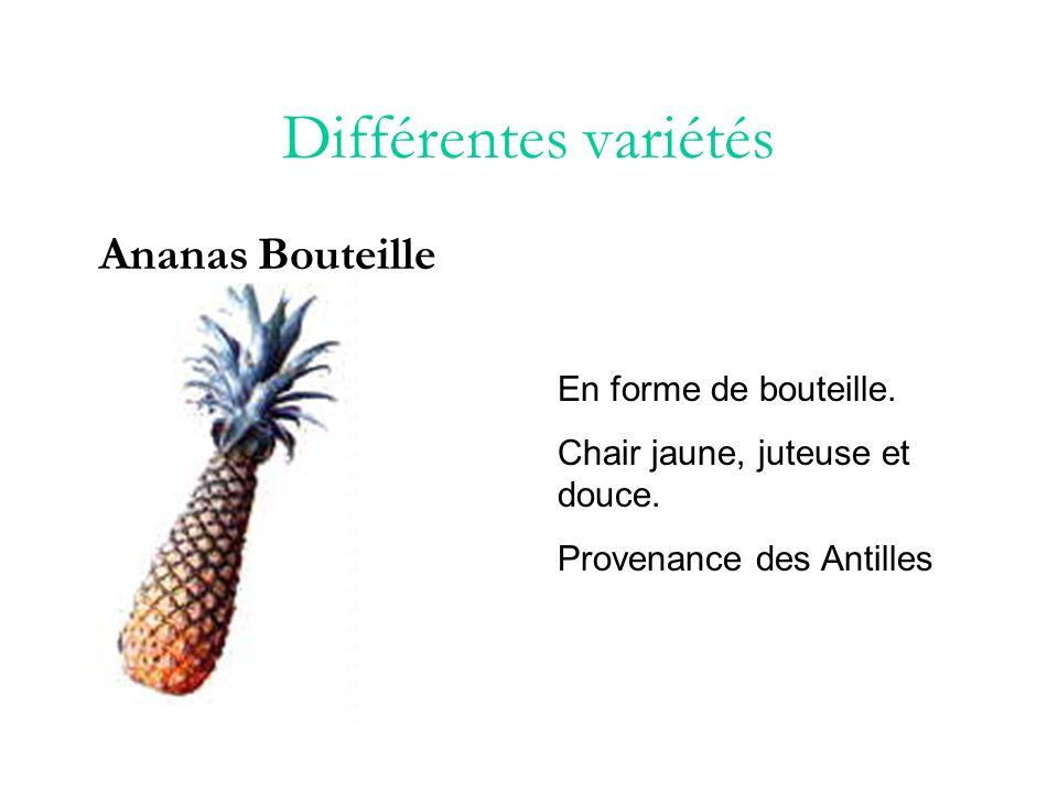 Différentes variétés Ananas Cayenne Ferme, acide, chair jaunâtre assez fibreuse, yeux plats, assez gros.