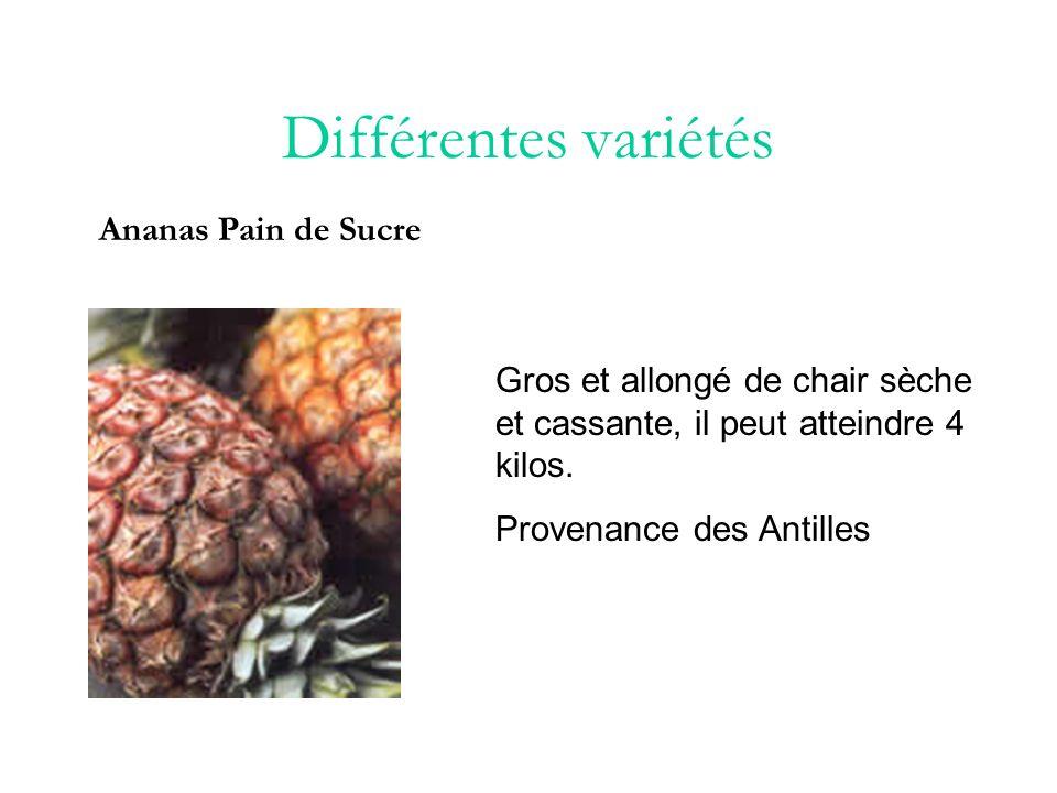 Différentes variétés Ananas Sugarloaf Chair jaune ou blanchâtre très sucrée