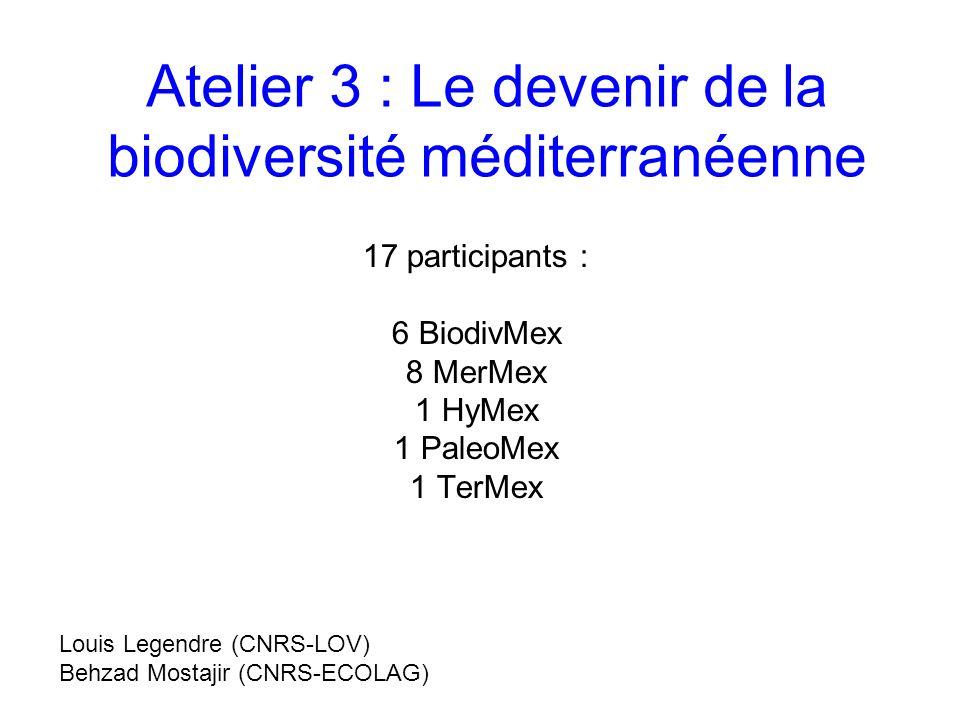 Atelier 3 : Le devenir de la biodiversité méditerranéenne 17 participants : 6 BiodivMex 8 MerMex 1 HyMex 1 PaleoMex 1 TerMex Louis Legendre (CNRS-LOV) Behzad Mostajir (CNRS-ECOLAG)