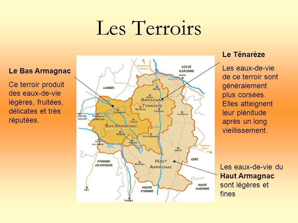 Les Terroirs Le Bas Armagnac Ce terroir produit des eaux-de-vie légères, fruitées, délicates et très réputées. Le Ténarèze Les eaux-de-vie de ce terro