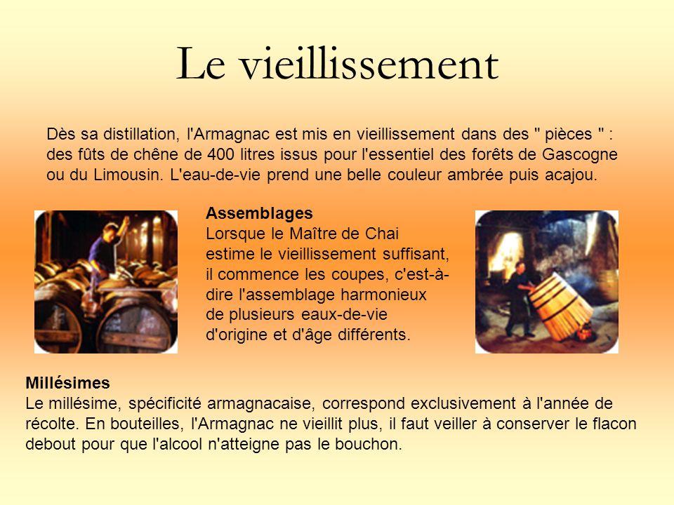 Le vieillissement Dès sa distillation, l'Armagnac est mis en vieillissement dans des