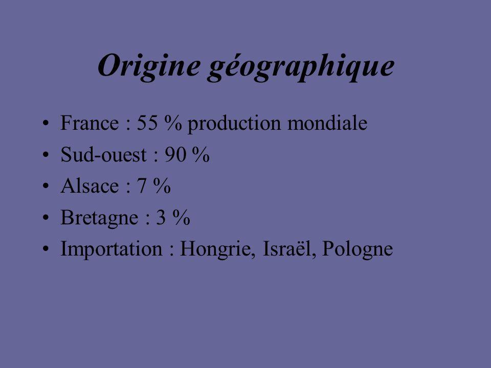 Origine géographique France : 55 % production mondiale Sud-ouest : 90 % Alsace : 7 % Bretagne : 3 % Importation : Hongrie, Israël, Pologne