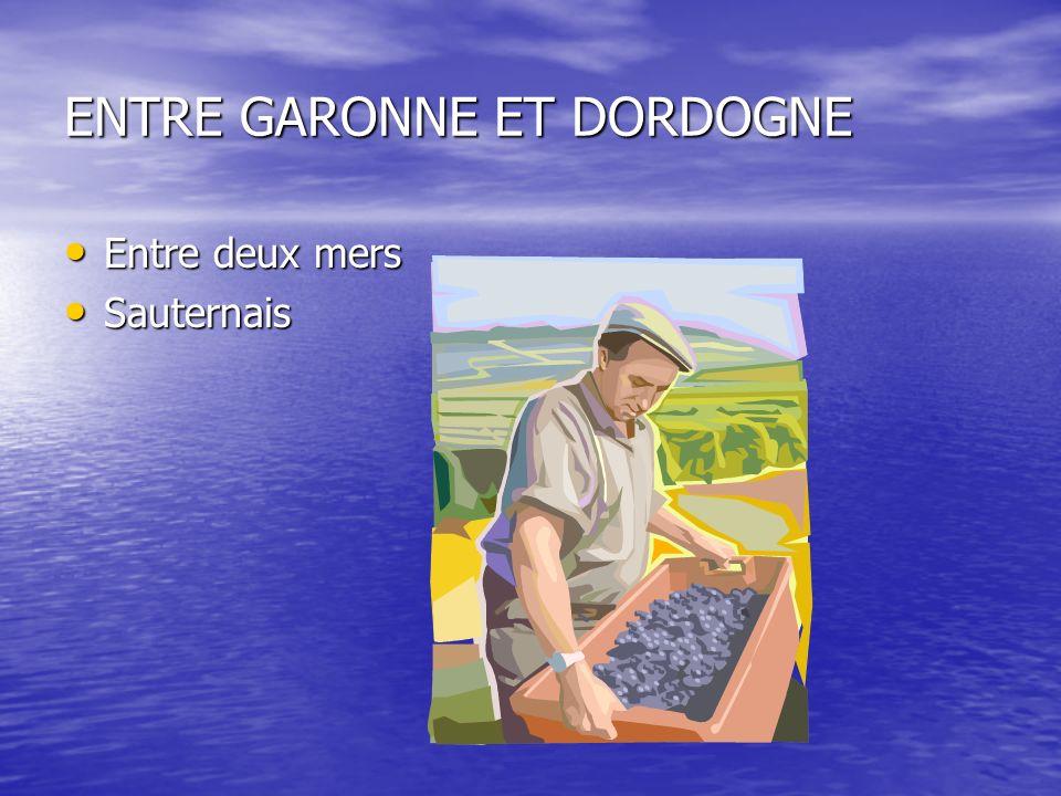 Les principaux cépages vins rouges Cabernet sauvignon ( tannique) vin de garde Cabernet sauvignon ( tannique) vin de garde Cabernet-franc (bouquet) Cabernet-franc (bouquet) Merlot ( souplesse, velouté, délicatesse) Merlot ( souplesse, velouté, délicatesse) Malbec Malbec Petit Verdot Petit Verdot