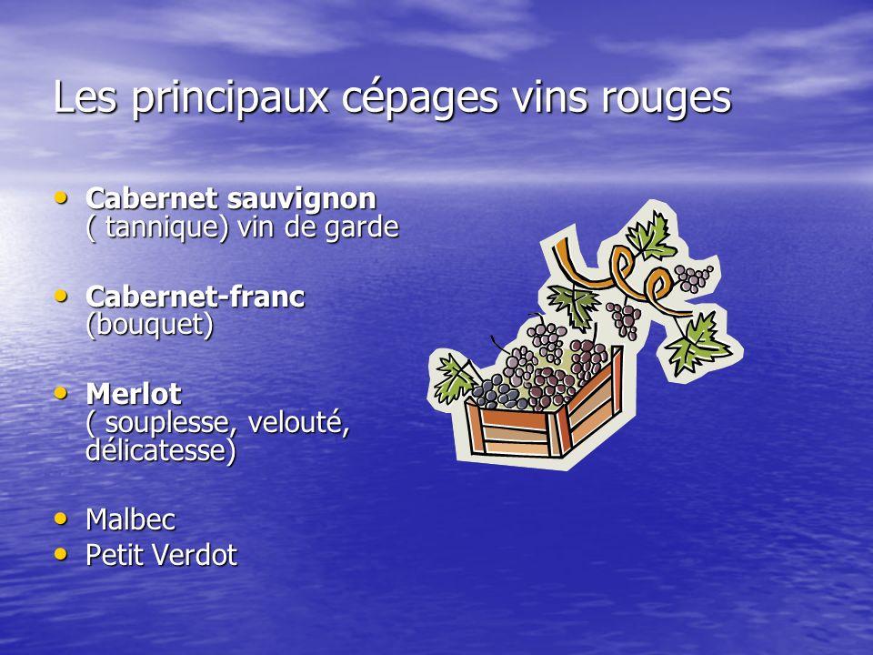 Les principaux cépages vins rouges Cabernet sauvignon ( tannique) vin de garde Cabernet sauvignon ( tannique) vin de garde Cabernet-franc (bouquet) Ca