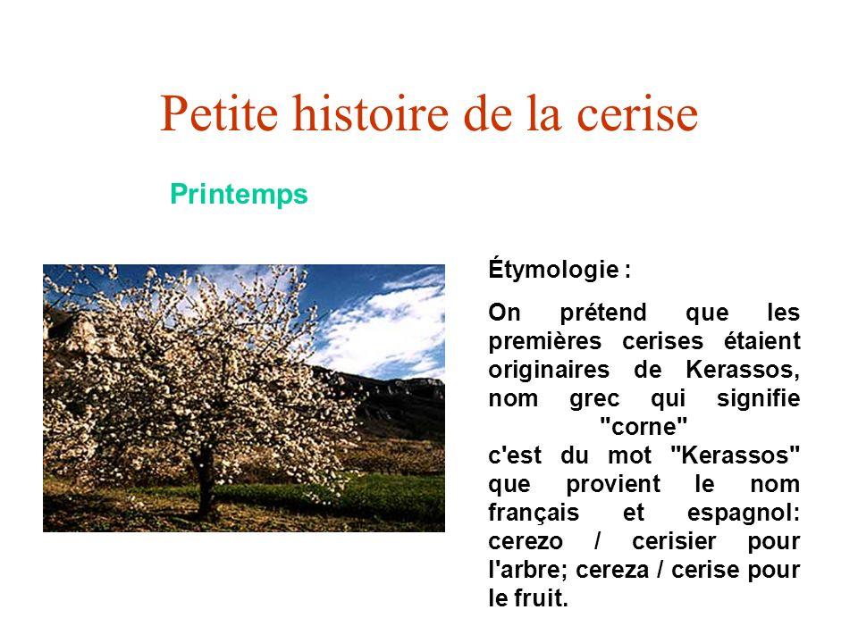 Petite histoire de la cerise Printemps Étymologie : On prétend que les premières cerises étaient originaires de Kerassos, nom grec qui signifie