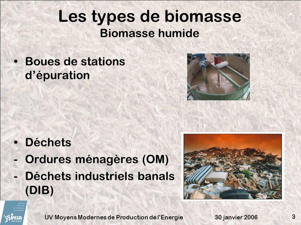 30 janvier 2006UV Moyens Modernes de Production de l'Energie 3 Les types de biomasse Biomasse humide Boues de stations dépuration Déchets -Ordures mén
