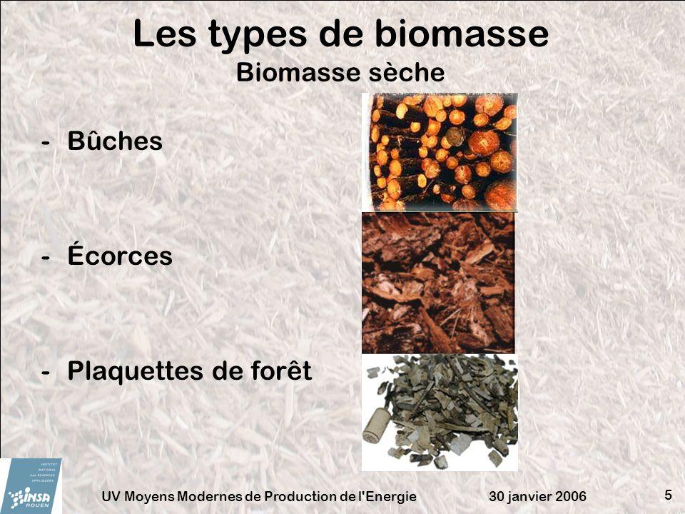 30 janvier 2006UV Moyens Modernes de Production de l'Energie 5 Les types de biomasse Biomasse sèche -Bûches -Écorces -Plaquettes de forêt