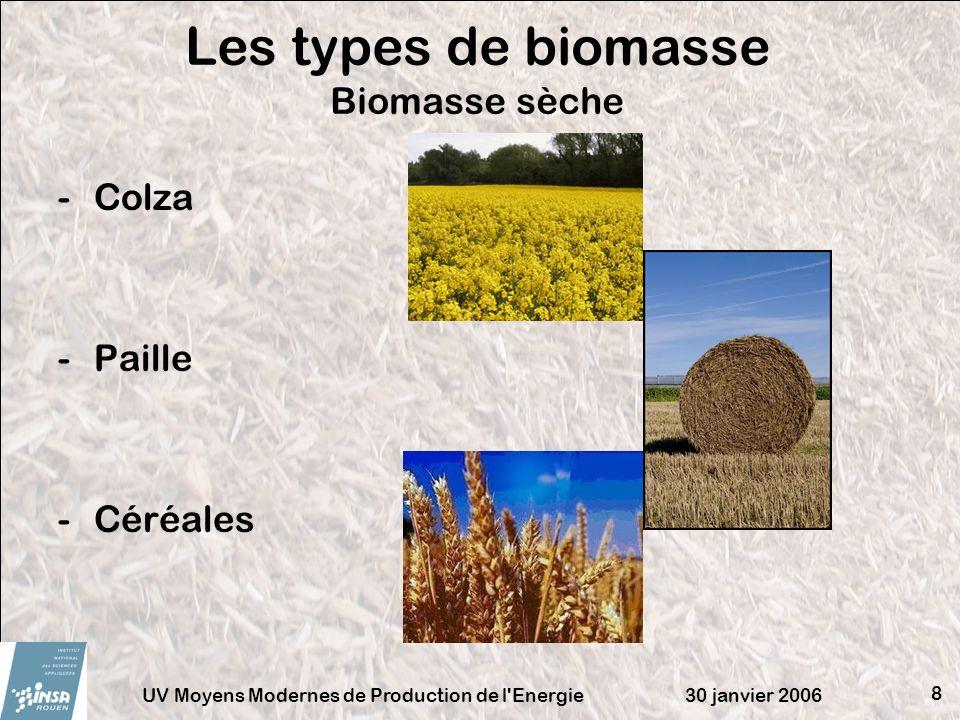 30 janvier 2006UV Moyens Modernes de Production de l'Energie 8 -Colza -Paille -Céréales Les types de biomasse Biomasse sèche