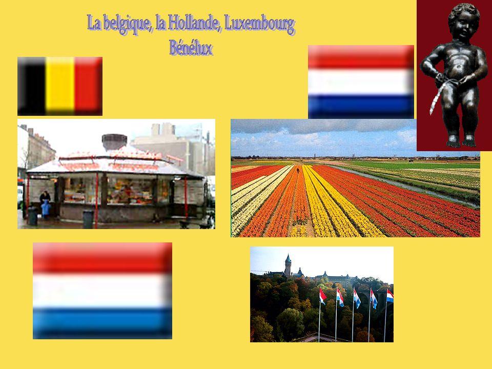 La Belgique Intitulé officiel : Royaume de Belgique Superficie : 30 518 km² Population : 10,2 millions d habitants Capitale : Bruxelles (970 000 habitants) Population et ethnies : 55 % de Flamands, 33 % de Wallons (d origine franco- latine), et environ 10 % d étrangers.