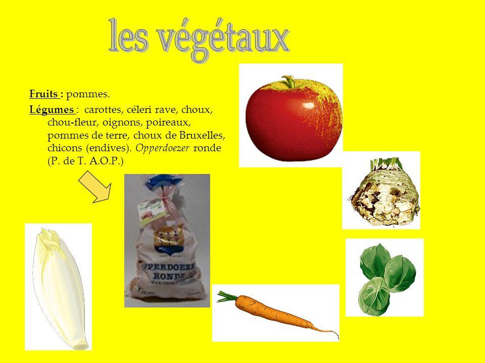 Fruits : pommes. Légumes : carottes, céleri rave, choux, chou-fleur, oignons, poireaux, pommes de terre, choux de Bruxelles, chicons (endives). Opperd